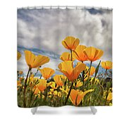 Poppies In The Wind Part Two  Shower Curtain