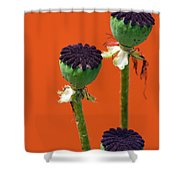 Poppies On Orange Shower Curtain