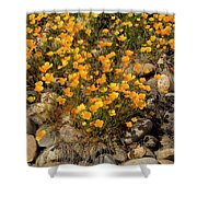 Poppies On The Rocks Shower Curtain