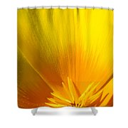 Poppies Orange Poppy Flower Close Up 2 Sunlit Poppy Baslee Troutman Shower Curtain