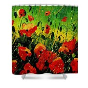 Poppies Poppies  Shower Curtain