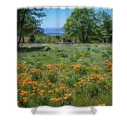 Poppies With A View At Oak Glen Shower Curtain