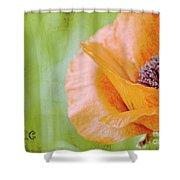 Poppy 9 Shower Curtain