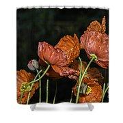 Poppy Drama Shower Curtain