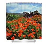 Poppy Explosion Shower Curtain