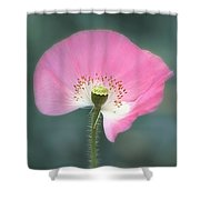 Poppy Fan Shower Curtain