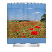 Poppy Fields 1 Shower Curtain