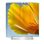 Poppy Flower Art Print Poppies 13 Botanical Floral Art Blue Sky Shower Curtain