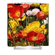 Poppy Flower Garden Shower Curtain