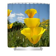 Poppy Flower Meadow 7 Poppies Blue Sky Artwork Baslee Troutman Shower Curtain