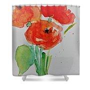 Poppy Flowers 1 Shower Curtain