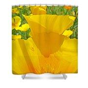 Poppy Flowers Art Prints Orange Poppies Baslee Troutman Shower Curtain
