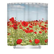 Poppy Flowers Field Nature Spring Scene Shower Curtain