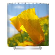 Poppy Flowers Meadow 3 Sunny Day Art Blue Sky Landscape Shower Curtain