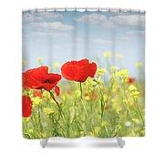Poppy Flowers Nature Spring Scene Shower Curtain