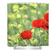 Poppy Flowers Spring Scene Shower Curtain