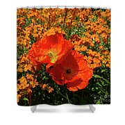 Poppy Glories Shower Curtain