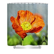 Poppy - Id 16235-142758-2720 Shower Curtain