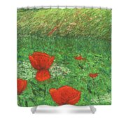 Poppy In Country Shower Curtain