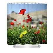 Red Poppy Flower On The Meadow Shower Curtain