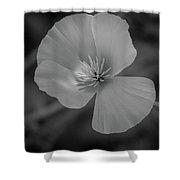 Poppy Monochrome Macro Shower Curtain