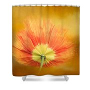 Poppy On Fire Shower Curtain