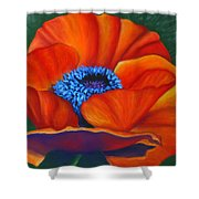 Poppy Pleasure Shower Curtain
