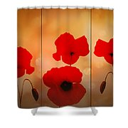 Poppy Triptych Shower Curtain by Valerie Anne Kelly