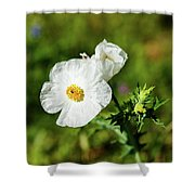 Poppy Wildflower Shower Curtain