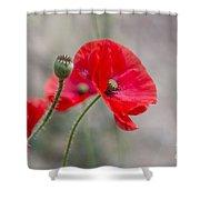 Poppys Shower Curtain