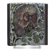 Porcupine In Aspen Shower Curtain