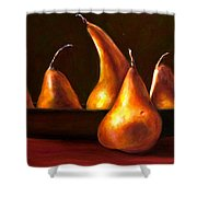 Port Au Pear Shower Curtain