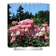 Portland's Pink Roses Shower Curtain