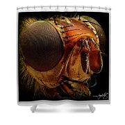 Portrait 1 Shower Curtain