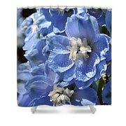 Portrait Blue Delphinium 114 Shower Curtain