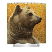 Portrait Of A Bear Shower Curtain