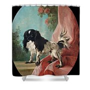 Portrait Of A Cavalier King Charles Spaniel Shower Curtain