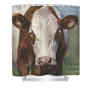 Portrait Of A Cow Iv Shower Curtain