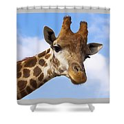 Portrait Of A Giraffe On The Background Of Blue Sky. Shower Curtain
