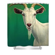 Portrait Of A Goat Shower Curtain by James W Johnson