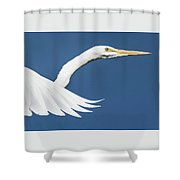 Portrait Of A Great Egret Shower Curtain