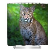 Portrait Of A Lady Shower Curtain