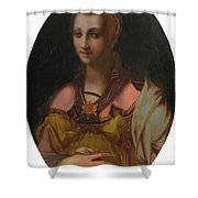 Portrait Of A Richly Dressed Lady Shower Curtain