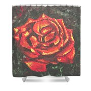 Portrait Of A Rose 2 Shower Curtain