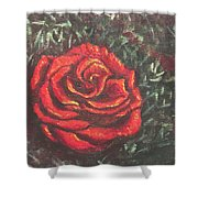 Portrait Of A Rose 4 Shower Curtain