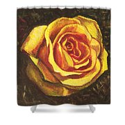 Portrait Of A Rose 5 Shower Curtain