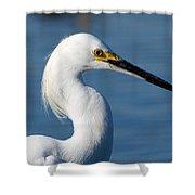 Portrait Of A Snowy Egret Shower Curtain