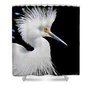 Portrait Of A Snowy White Egret Shower Curtain