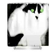 Portrait Of A White Cat Shower Curtain