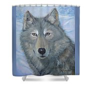 Portrait Of A Wolf Shower Curtain